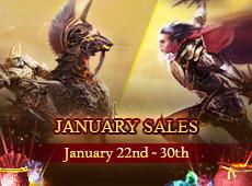 Jan Sale on Jan 22nd to Jan 30th