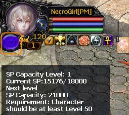 Necromancer (Novice)
